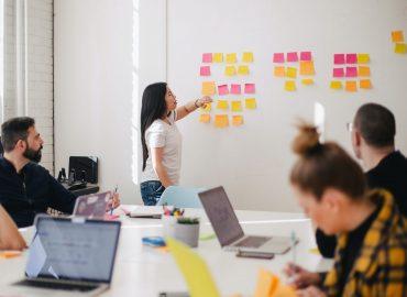 business plan - khoushehcheen